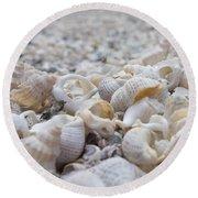 Shells 3 Round Beach Towel