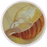 Shells 4 Round Beach Towel