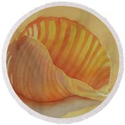 Shells 6 Round Beach Towel