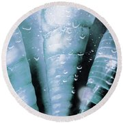 Shells And Ocean Spray Round Beach Towel