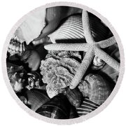 Round Beach Towel featuring the photograph Shells And Starfish In Black And White by Angie Tirado