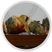 Shells Of The Sea In Orange And Gray Round Beach Towel