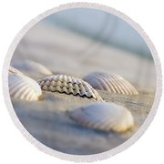 Shells  Round Beach Towel by Peter Tellone