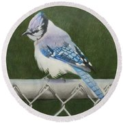 Round Beach Towel featuring the painting Sherrie's Bluejay by Constance DRESCHER