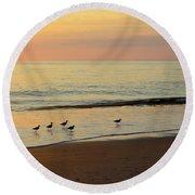 Shorebirds 9/4/17 Round Beach Towel