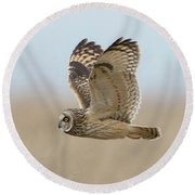Short-eared Owl Hunting Round Beach Towel