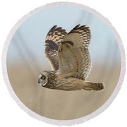 Short-eared Owl Hunting Round Beach Towel