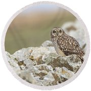 Short-eared Owl In Cotswolds Round Beach Towel