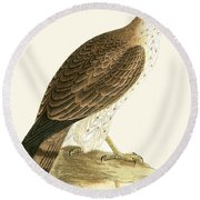 Short Toed Eagle Round Beach Towel by English School