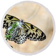 Showy Nymph Round Beach Towel by Debbie Green