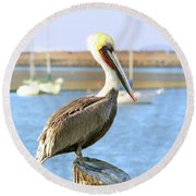 Shy Brown Pelican Round Beach Towel