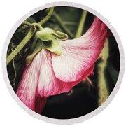 Shy Hollyhock Round Beach Towel by Karen Stahlros
