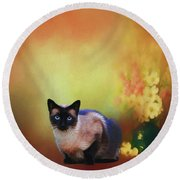 Siamese If You Please Round Beach Towel by Suzanne Handel