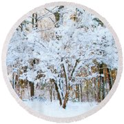 Siebold Viburnum In Snow Round Beach Towel