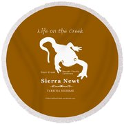 Sierra Newt - White Round Beach Towel