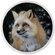 Sierra's Profile Round Beach Towel by Richard Bryce and Family