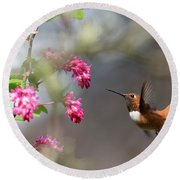 Sign Of Spring 3 Round Beach Towel by Randy Hall