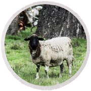Silence Of The Umm Sheep 1 Round Beach Towel