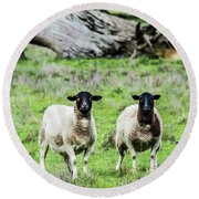 Silence Of The Umm Sheep 2  Round Beach Towel