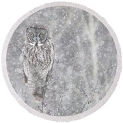 Round Beach Towel featuring the photograph Silent Snowfall Portrait by Everet Regal