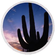 Silhouette Of A Cactus, Four Peaks Round Beach Towel