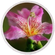 Silk Floss Flower Round Beach Towel