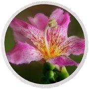 Silk Floss Flower Round Beach Towel