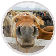 Silly Icelandic Horse Round Beach Towel