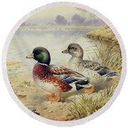 Silver Call Ducks Round Beach Towel by Carl Donner