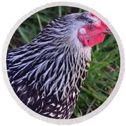 Round Beach Towel featuring the photograph Silver Laced Wyandotte by Mark McReynolds