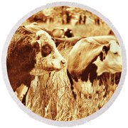Simmental Bull 3 Round Beach Towel by Larry Campbell