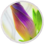 Round Beach Towel featuring the photograph Simple Beauty by Bruce Carpenter