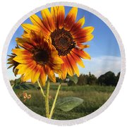 Sunflower  Beauty Round Beach Towel