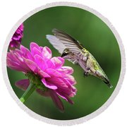 Round Beach Towel featuring the photograph Simple Pleasure Hummingbird Delight by Christina Rollo