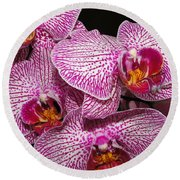 Singapore Orchid Round Beach Towel