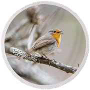 Singing Robin Round Beach Towel by Torbjorn Swenelius
