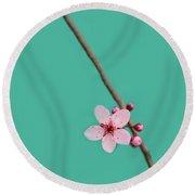 Single Cherry Blossom Round Beach Towel
