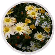 Round Beach Towel featuring the photograph Single Chrysanthemums by Kathryn Meyer