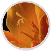 Round Beach Towel featuring the photograph Single Drop by Jean Noren