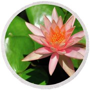 Round Beach Towel featuring the photograph Single Flower by Gandz Photography