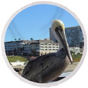 Round Beach Towel featuring the photograph Single Pelican On The Pier by Bonnie Muir