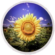Single Sunflower Round Beach Towel