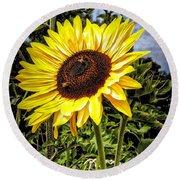 Single Sunflower Round Beach Towel