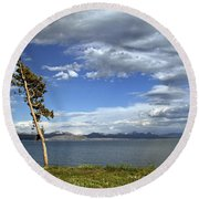 Single Tree - 365-359 Round Beach Towel