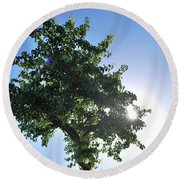 Single Tree - Sun And Blue Sky Round Beach Towel
