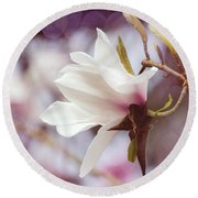 Single White Magnolia Round Beach Towel