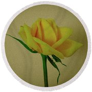 Single Yellow Rose Round Beach Towel
