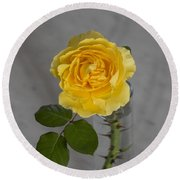 Single Yellow Rose With Thorns Round Beach Towel