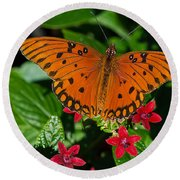 Sipping Gulf Fritillary Round Beach Towel