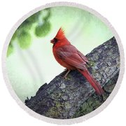 Sir Cardinal Round Beach Towel